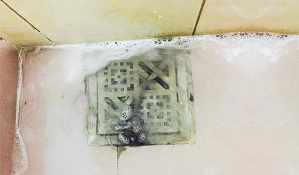 nghẹt cống thoát nước toilet