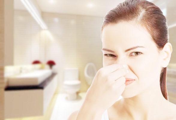 sai lầm trong cách làm nhà vệ sinh hết mùi