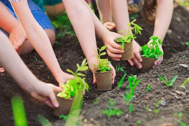 Giải pháp bảo vệ môi trường
